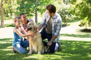 Padre e famiglia carezzano il cane